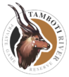 TAMBOTI LOGO.transparent